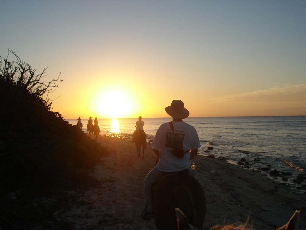 Image 7 - Horse riding, Cayman Islands